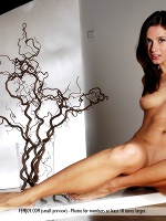 Loretta By Pedro Saudek In Fever ::: Femjoy :::