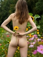 Mariposa By Stefan Soell In Sunflower - Photo 11