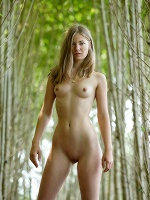Nastya H By Stefan Soell In Try Tonight ::: Femjoy :::