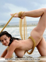 Sofie Sven Wildhan So Free ::: Femjoy :::