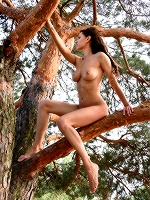 Susi R By Sven Wildhan In So High ::: Femjoy :::