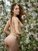 Vika A By Stefan Soell In Apple Blossom ::: Femjoy :::