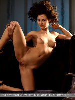 Prima By Paromov In Presenting Prima - Photo 7