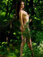 Amelie The Emerald Forest - Photo 8