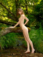 Anya Frolic Forest - Photo 12