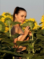 Marta Flowers In The Field - Photo 10