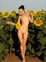 Marta Flowers In The Field - Photo 7