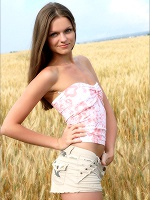 Tessa Golden Harvest - Photo 1