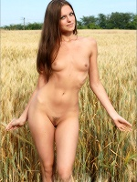 Tessa Golden Harvest - Photo 6