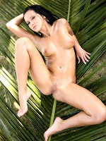 Angelica Kitten In Coconut - Photo 5